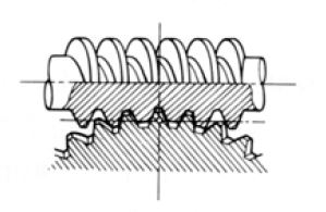 Fig.1.10 Worm Gear pair