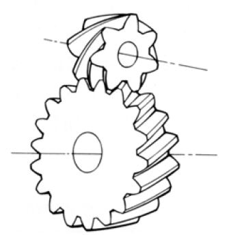 Fig.1.11 Screw Gear