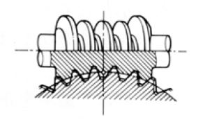 Fig.1.13 Enveloping Gear Pair