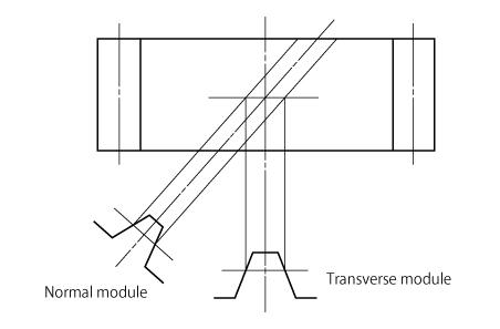 Transverse module and Normal module